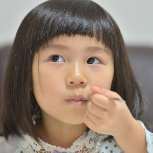 おもてなしギフト シフォンケーキ ママの優しさを伝える横須賀シフォン 贈る前に確かめたいお試しセット|omotenashigift|04