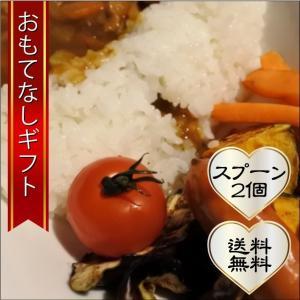 おもてなしギフト 横須賀カレー 横須賀方丈の横須賀カレー たっぷりと1kg×2パック バーベキューやカレーパーティ、そしてダムカレー製作に|omotenashigift
