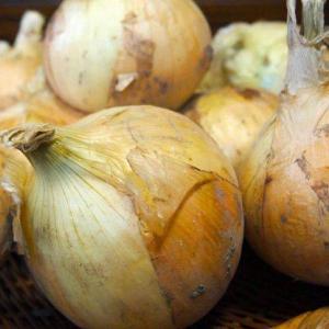 おもてなしギフト 玉ねぎ 淡路の無農薬の玉ねぎ5kg|omotenashigift|05