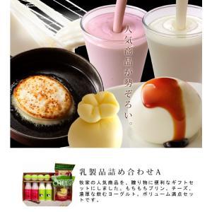 牧家 乳製品詰合せA 5種 7点セット Bocca お歳暮のし対応可|omotesando-club