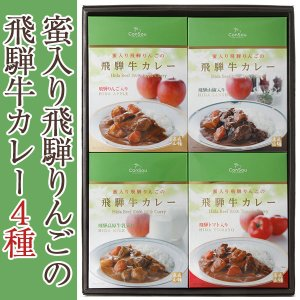 (27日9:59まで5倍)蜜入り飛騨りんごの飛騨牛カレー4個セット(飛騨みどり舎) お中元のし対応可|omotesando-club
