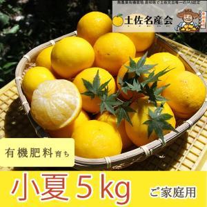 有機肥料で育てた小夏(5kg)ご家庭用|omotesando-club