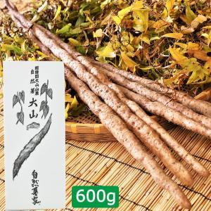 自然薯 大山 600g(30cm程度にカット・3〜6本入り)+押し麦付 ディオスコリン含有|omotesando-club