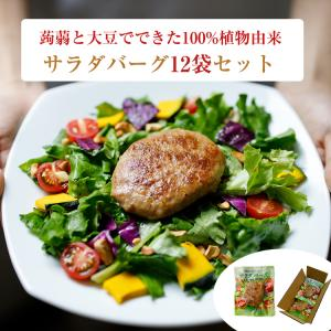 100%植物由来のハンバーグ 「サラダバーグ」12袋セット 茂木食品 ヴィーガン omotesando-club
