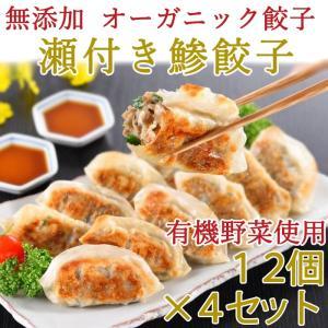 無添加 瀬付き鯵餃子 210g(12個)×4セット 天然魚と有機野菜、オーガニック皮を使用 日本フーズ お歳暮のし対応可 omotesando-club
