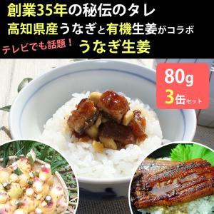 うなぎ生姜 3瓶セット 佃煮 鰻 ウナギ(敬老のお祝い用途でお届け不可)|omotesando-club