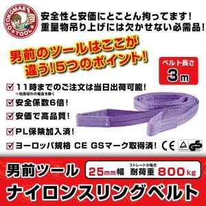 スリングベルト 25mm幅 3m ナイロン製スリングベルト ベルトスリング 吊りベルト 繊維ベルト 吊り具|omt-store
