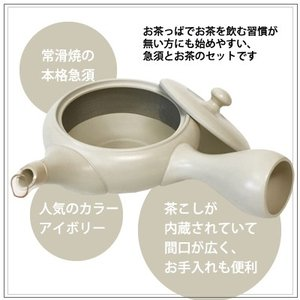 【お茶と急須のセット】 春待ち茶と常滑焼アイボリー急須セット|omuraen|03