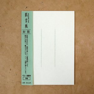 肌吉封筒 洋角 罫線グリーン(ネコポス可)|on-washi