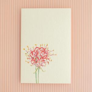 絵葉書 おしゃれ 和紙 季節の絵はがき 秋 彼岸花の画像