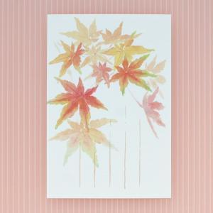 季節のはがき 秋 紅葉がさね(ネコポス可)|on-washi