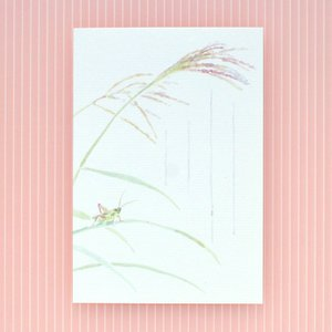 季節のはがき 秋 虫の音(ネコポス可)|on-washi