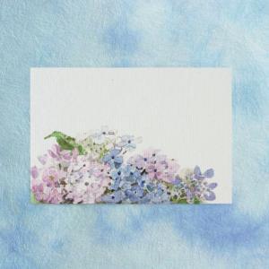 季節のはがき 端午・初夏 あじさい 横(ネコポス可)|on-washi
