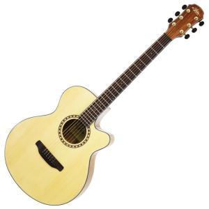 ARIA ( アリア ) TG-1 (カラー:N (Natural)) アコースティックギター セット on-you-music