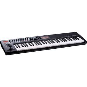 Roland ( ローランド ) A-300PRO-R ( MIDI キーボード コントローラー )