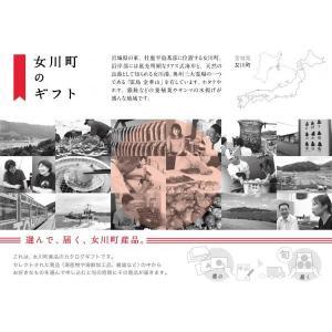 女川町のギフト|onagawa-again