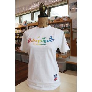 Galapagos Tシャツ【あがいんおながわ限定ver】(マルサン) MS-01|onagawa-again