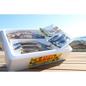 お魚いちば『おかせい』季節の干物セット|onagawa-again