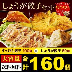 食べ比べセット新登場 餃子100個と生姜餃子60個 大阪 ギフト 取り寄せ ぎょうざ