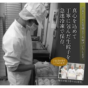 ホークスセール 送料無料 餃子 200個セット 約3.6kg ぎょうざ 冷凍食品 特産品 わけあり 名物商品 約36人前 訳あり 大阪 ギフト 業務用|once-in|11