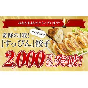 ホークスセール 送料無料 餃子 200個セット 約3.6kg ぎょうざ 冷凍食品 特産品 わけあり 名物商品 約36人前 訳あり 大阪 ギフト 業務用|once-in|19