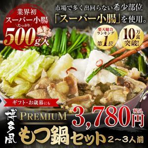 プレミアム博多もつ鍋2-3人前セット スープ11種類 もつ鍋メガ盛り ギフト お年賀 梅