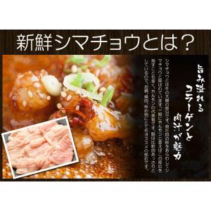 セール 送料無料 焼肉やBBQセット 新鮮ホルモン 約1キロ もつ鍋 シマチョウ ショウチョウ 牛肉 焼肉 冷凍食品 特産品 お試し 訳あり わけあり|once-in|02