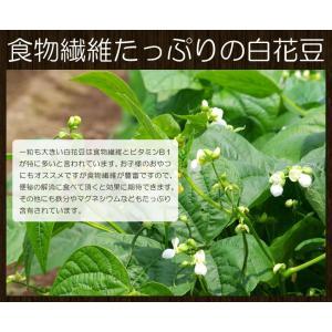 白花豆の甘煮420g!一粒も大きい白花豆は食物繊維とビタミンB1が特に多いと言われています。業務用 名産 特産品 ギフト 大阪|once-in|02