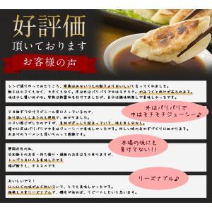 送料無料 中華3点メガセット 餃子100個(18g×100個) 炒飯2袋(250g×2袋) ラーメン4食 (とんこつ+醤油×2)冷凍食品 ぎょうざ 訳あり|once-in|14