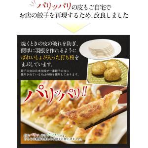 送料無料 中華3点メガセット 餃子100個(18g×100個) 炒飯2袋(250g×2袋) ラーメン4食 (とんこつ+醤油×2)冷凍食品 ぎょうざ 訳あり|once-in|07