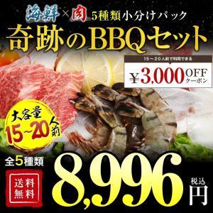 送料無料 牛焼肉セット4.8kg 約20人前 焼き肉  バーベキュー用 冷凍食品 特産品 名物商品  お試し 訳あり 牛肉 大阪 ギフト 食品ロスを減らそう|once-in