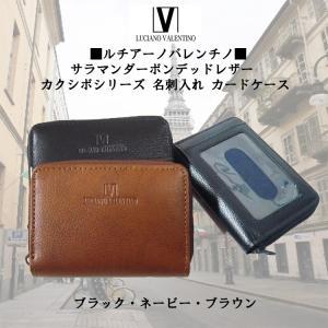 ルチアーノバレンチノ Luciano Valentino 小銭入付きパスケース 定期入れ LUV-8008