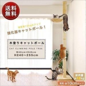 キャットタワー キャットポール 突っ張り ハンモック付き 全高240-255cm 直径10cm 猫ちゃん 木登り 運動不足 木登りタワー 爪とぎ 多頭 猫 ねこ ペット 送料無料