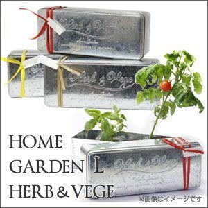 ホームガーデンL ハーブ&ベジ HG-3...の商品画像