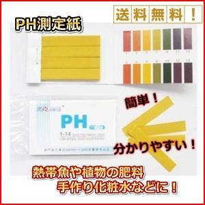 リトマス 紙 自由 研究 pH 実験 水溶液 色 酸性/アルカリ性 80枚|onesshop