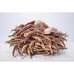 送料無料 1肩300g超 5L 生ずわい蟹 3kg 化粧箱入|onh