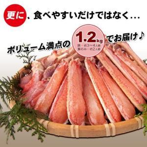 送料無料 蟹しゃぶ カニ鍋 セット 生ずわい蟹 ハーフカット 1.2kg|onh|04