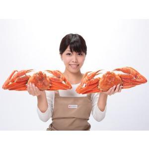 送料無料 船上ボイル 新物 巨大 姿ずわい蟹 約2kg 2尾|onh