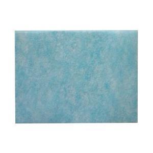 DAINICHI H060318 アレルバリアフィルター ダイニチ 加湿器用アレルバリアフィルター 4951272019138|onhome