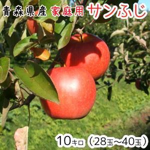 青森りんご 送料無料 家庭用サンふじ10キロ28〜40玉 発...