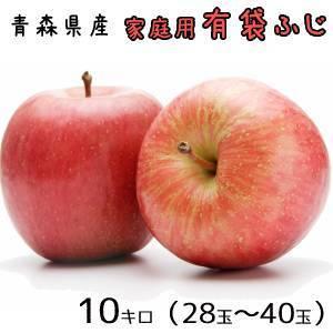青森りんご☆送料無料☆家庭用有袋ふじ10キロ28-40玉|oniringo