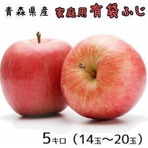 青森りんご☆送料無料☆家庭用有袋ふじ5キロ14〜20玉 発送...