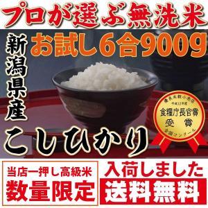 ポイント消化 送料無料 600 お試し 食品 こしひかり プ...