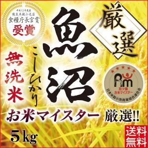米 5kg 無洗米 こしひかり 最高級 魚沼産 産地直送 コ...