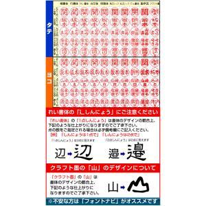 シャチハタ ブラック11 別注品 印鑑はんこ 認印 ハンコ 判子 はんこ 浸透印  ネーム印|online-kobo|05