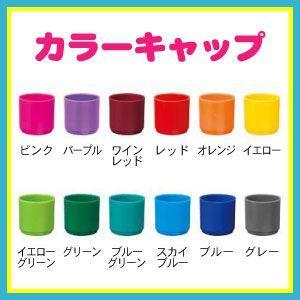シャチハタ ネーム9専用 着せ替えパーツ カラーキャップ|online-kobo