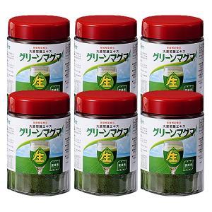 グリーンマグマ 170g 6個セット 日本薬品開発 大麦若葉 青汁 酵素 赤神力
