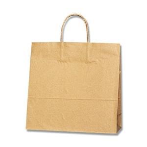 ヘイコー 手提 紙袋 25CB 3才 未晒 ク...の関連商品9