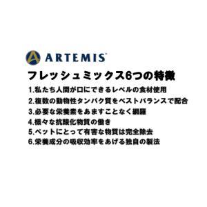 アーテミス フレッシュミックス フィーライン 1kg【正規品】|onlineshop|02