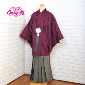 カラー紋付袴セット/メンズ/50-535KT/95-814MR/6号/成人式/卒業式/レンタル/無地...